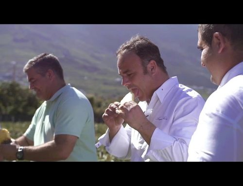 The Traveling Chef – Tráiler